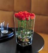 Red Rose with River Rocks (12)